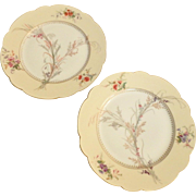 "Pair of Sevres Chateau de St. Cloud French Porcelain 8-1/2"" Plates with Wildflowers"
