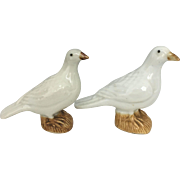 Pair of 19th C Chinese Porcelain Doves Pigeons