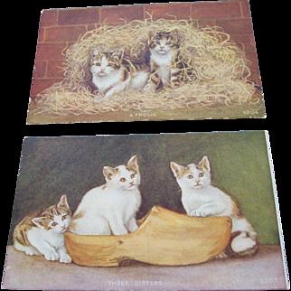 Kittens Advertising Post Cards - Soapine