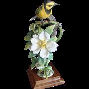 Royal Worcester Bird Figurine - Hooded Warbler