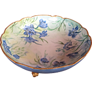 Rare Magnificent Limoges Footed Hand Painted Dish Morning Glory