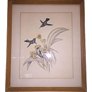 Framed Gould Lithograph of Hummingbirds Soft Colors Volume 5