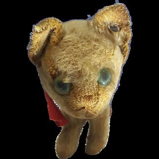 1910-1920's Antique Steiff Cat Kitten w/ RARE trailing ff Steiff knopf button