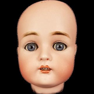 Antique Doll German Kammer Reinhardt Simon Halbig 55 Head RARE Mold Blue Eyes
