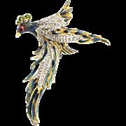 Vintage Huge 1940 CORO CRAFT Sterling Enamel Rhinestone Bird Figural Brooch Pin
