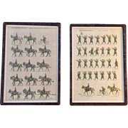 "Pair of ""Jean Auge"" Military Prints Depicting ""L'Armee Francaise D'Aout 1914"" in Burl Walnut Frames"