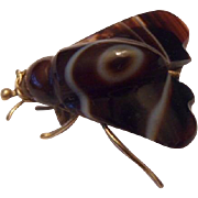 Rare Antique Victorian Banded Scottish Agate and 15ct Gold Carved Fly Insect Pin