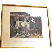 "Engraving, London,  1856, "" Hunting Mare and Foal."""