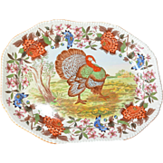 Copeland Spode earthenware meat plate, 1900c.