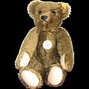 Steiff Classic Teddy Bear 1909 Replica