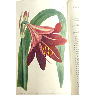 1799 & 1800  W. Curtis, London, Combined  69 Hand Colored Botanical Plates by Artist Edwards