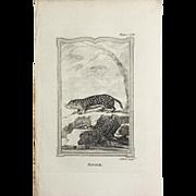 "1812 Comte de BUFFON'S Histoire Naturelle,   4 1/2 X 7 1/4 IN. Plate ""SOUSLIK #150 (Russian Marmot)"","