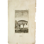 1812 Comte de BUFFON'S Histoire Naturelle,   4 1/2 X 7 1/4 IN. Plate HYENA #182,   With Text Pages.