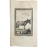 "1812 Comte de BUFFON'S Histoire Naturelle,   4 1/2 X 7 1/4 IN. Plate ASS #20"",   With Text Pages."