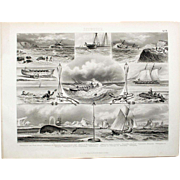 1860 Bilder Atlas Sea print #19 Sea scenes of Whaling, Fishing, Ships Floundering, Rescues.