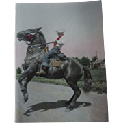 Early 1900s Hand Tinted Color Photo Young Man Rearing Stallion Horse Photograph