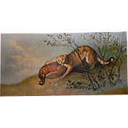 Antique 19th C. oil on canvas hunting painting of pheasant and wild cat