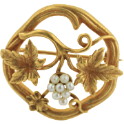 14kt Yellow Gold Leaf and Vine Pin with Pearls