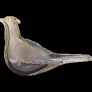 Venini Murano Tyra Lundgren Glass Dove