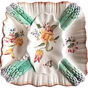 Majolica French Square Asparagus Plate from Longchamp