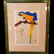 1920's Martin Erich (M.E.) Philipp Original Woodblock Print, Blue Macaw Parrot, Framed