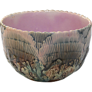 Majolica Etruscan Shell and Seaweed Bowl M-12 19th Century