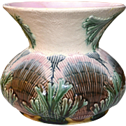 Majolica Etruscan Shell and Seaweed Cuspidor