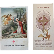 Plants from the Garden of Gethsemane Souvenir Cards