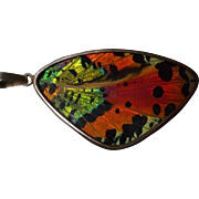 Vintage Butterfly Wing Pendant set in Sterling