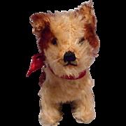 Steiff Mohair Molly Dog 14 Cm