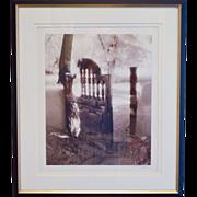 Garden Gate Photograph by Connie Reider