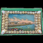 Seashell trinket pincushion / trinket box