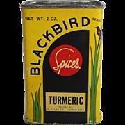 "Vintage ""Blackbird"" Turmeric Spice Container"