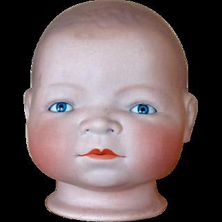 Antique Bye-Lo Baby Doll Head by Grace S. Putnam