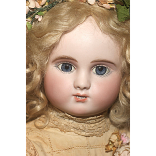 """22"""" Scarce Bourgoin  Series 'C' Steiner with Lever Eyes and Voice Box"""