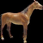 Old Vienna Bronze Race Horse
