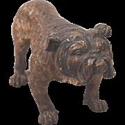 Antique Large Cold Painted Vienna Bronze English Bulldog