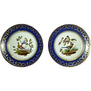 A Pair of Sevres Blue Nouveau Plates with Hand Painted Ornithological Subjects