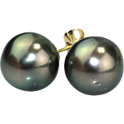 Cultured Tahitian Pearls Stud Earrings 14KT Gold