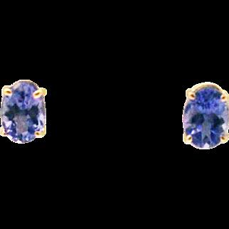 Natural Tanzanite Stud Earrings 14KT Yellow Gold