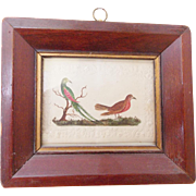 CA. 1860 Pennsylvania Folk Art Watercolor Painting of 2 Fanciful Birds