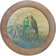 Antique Early 1900's Oil on Tin Round Painting of 2 Parakeets on a Branch