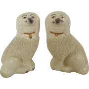 Pair of Diminutive English Staffordshire Poodle Dogs