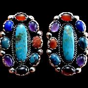 Turquoise Clip On Earrings Navajo Earrings Navajo Jewelry Old Pawn Turquoise Old Pawn Jewelry Old Pawn Native American Jewelry 925 Cabochon Lapis Amethyst Fire Opal Carnelian Multigem Multistone Vintage Artisan Clip On Ear Clips Handmade