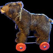 Vintage German Schildkröt Bear Pull Toy - Red Tag Sale Item