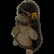Vintage German Steiff Hedgehog with Button & Banner