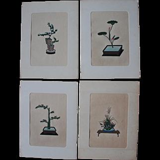 Set of 12 Antique Japanese Ikebana Woodblock Prints/Portfolio/Early 1900s