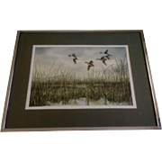 Fred A Kingwill, Watercolor Painting, Northern Pintail Ducks in Flight Over Marsh, Works on Paper Signed by Jackson Hole Artist