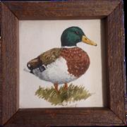 (Elizabeth) Liz Sweet, Watercolor Painting, Mallard Duck, Works on Paper, Signed by Artist