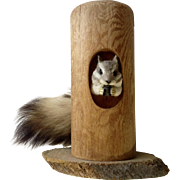 Adorable Chipmunk in a Log by Vision Products Purchased in Colorado